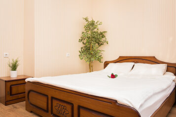 1-комн. квартира, 46 кв.м. на 2 человека, Волжская набережная, Нижний Новгород - Фотография 1