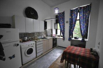 1-комн. квартира, 50 кв.м. на 4 человека, улица Геронтия Кикодзе, 3, Тбилиси - Фотография 4