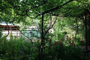 Гостевой дом , Pirosmani, 32 на 3 номера - Фотография 2