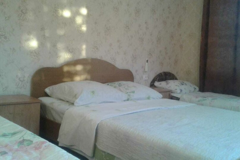 Гостевой дом  Абхазский дворик, Альпийская, 19 на 11 комнат - Фотография 8