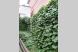Гостевой дом, Коста Хетагурова,  102/3 на 3 номера - Фотография 1