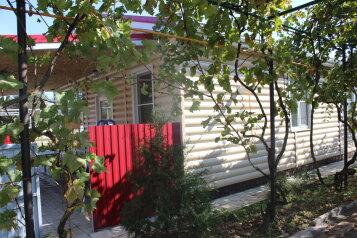 дом 4:  Дом, 8-местный, Дома на берегу азовского моря, Школьная улица на 4 номера - Фотография 4