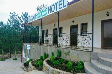 Hotel  Panorama Akhaltsikhe, улица Тамарашвили, 57 на 4 номера - Фотография 2