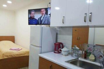 1-комн. квартира, 22 кв.м. на 2 человека, улица Михаила Цинамдзгвришвили, Тбилиси - Фотография 2