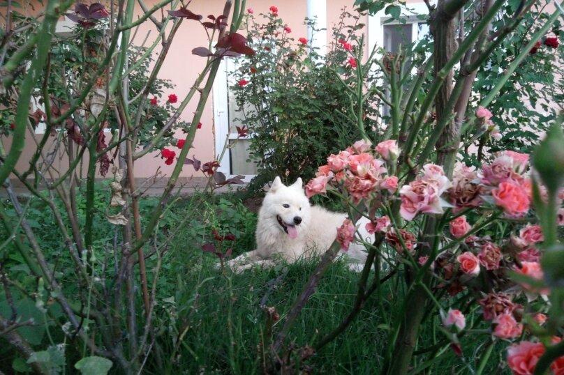 Четырехместный Люкс с видом на сад, на первом этаже. , Приморская, 1А, Береговое, Севастополь - Фотография 6