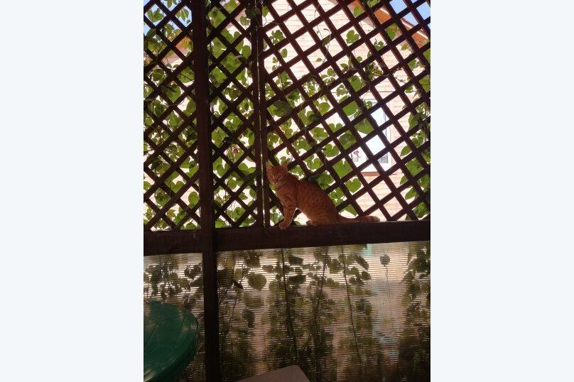 Должанский дворик, улица Пушкина, 3Б на 6 номеров - Фотография 30