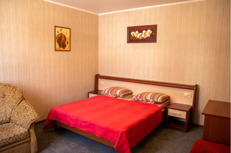 """Гостевой дом """"АЛЬПИНА"""", Пионерская улица, 33 на 10 комнат - Фотография 62"""