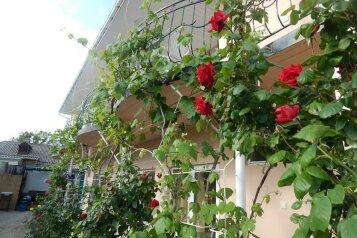 Гостевой дом , Пушкарский переулок, 4А на 5 номеров - Фотография 1