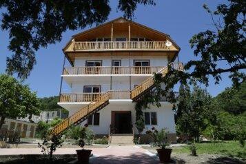 Гостевой дом , село Лдзаа, улица Агрба на 10 номеров - Фотография 1