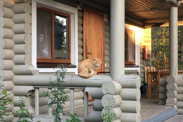 База отдыха , Казарменная, 30 на 8 номеров - Фотография 1