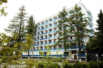 Гостиница, улица Лакоба, 109 на 10 номеров - Фотография 1