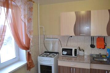 1-комн. квартира, 35 кв.м. на 4 человека, Луганская улица, 62, Киров - Фотография 4