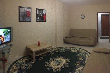 1-комн. квартира, 42 кв.м. на 4 человека, Краснозвёздная улица, 31, Нижний Новгород - Фотография 3