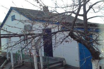 Дом, 38 кв.м. на 4 человека, 2 спальни, Восточная, 11, село Междуречье - Фотография 1