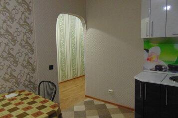 1-комн. квартира, 45 кв.м. на 4 человека, улица Елькина, Пермь - Фотография 3