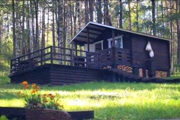 База отдыха, 20 кв.м. на 5 человек, 1 спальня, п. Харвиа, 999, Лахденпохья - Фотография 3