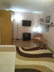 1-комн. квартира, 30 кв.м. на 2 человека, Красная улица, Краснодар - Фотография 2
