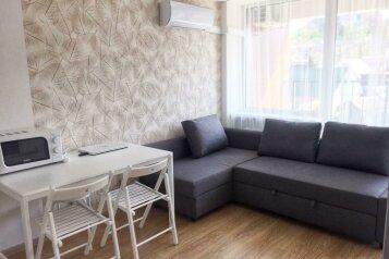 1-комн. квартира, 24 кв.м. на 3 человека, Старошоссейная, 5к2, Дагомыс - Фотография 1