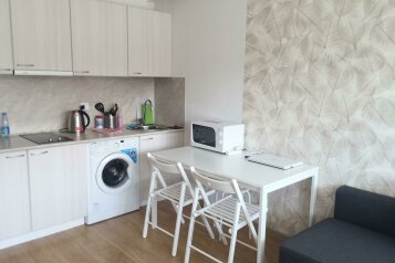 1-комн. квартира, 24 кв.м. на 3 человека, Старошоссейная, 5к2, Дагомыс - Фотография 4