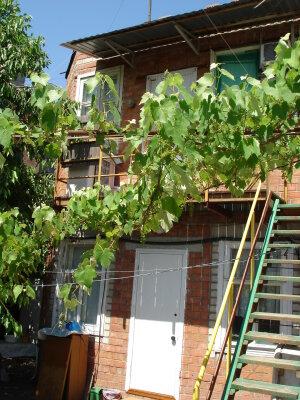 Гостевой дом для отдыхающих, улица Победы, 110 на 5 номеров - Фотография 1