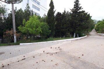 1-комн. квартира, 32 кв.м. на 4 человека, Качинское шоссе, 35 а, Севастополь - Фотография 2