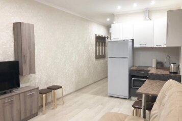 1-комн. квартира, 32 кв.м. на 3 человека, Александрийская дача, 26, Семидворье - Фотография 3