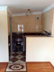 1-комн. квартира на 2 человека, улица Иосефа Нонешвили, 1, Батуми - Фотография 3