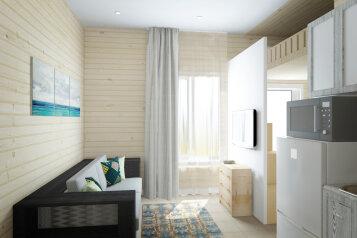 Апартаменты-студия:  Номер, Апартаменты-студия, 4-местный (2 основных + 2 доп), 1-комнатный, Гостевой дом , 1-й Академический переулок на 2 номера - Фотография 4