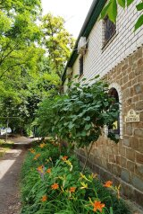 Гостевой дом  в Феодосии , улица Шевченко, 41 на 7 номеров - Фотография 2