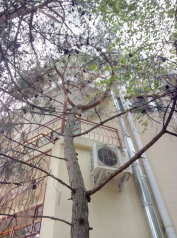 Мини-отель , Солнечная, 13-В на 6 номеров - Фотография 2