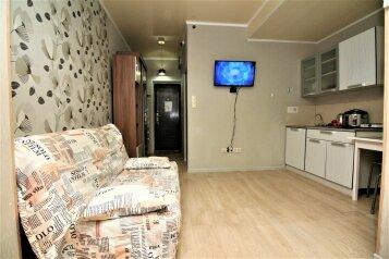 1-комн. квартира, 25 кв.м. на 4 человека, Цветочная улица, 44/2, Адлер - Фотография 3