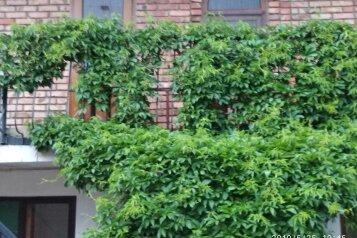 Уютный дворик на 6 номеров,100 метров от моря., улица Ленина, 6 на 6 номеров - Фотография 1