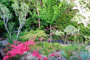 Дом с  зеленым двором в Никите , 500 м к морю, 50 кв.м. на 6 человек, 2 спальни, Никитский сад, 28, Ялта - Фотография 2
