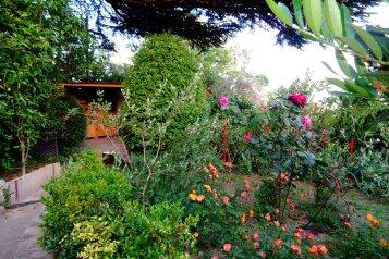 Дом с  зеленым двором в Никите , 500 м к морю, 50 кв.м. на 6 человек, 2 спальни, Никитский сад, 28, Ялта - Фотография 3