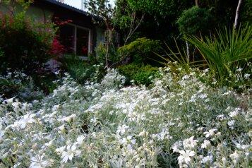 Дом с  зеленым двором в Никите , 500 м к морю, 50 кв.м. на 6 человек, 2 спальни, Никитский сад, 28, Ялта - Фотография 4