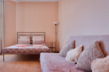 1-комн. квартира, 45 кв.м. на 4 человека, Петрозаводская улица, 13, Санкт-Петербург - Фотография 3