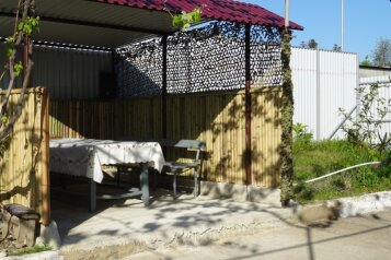 Гостевой дом, с. Псырцха, Сухумское шоссе на 11 номеров - Фотография 3
