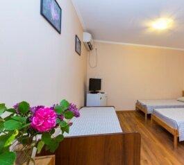 Стандарт:  Номер, Стандарт, 3-местный, 1-комнатный, Мини-гостиница , улица Агрба, 87 на 4 номера - Фотография 4
