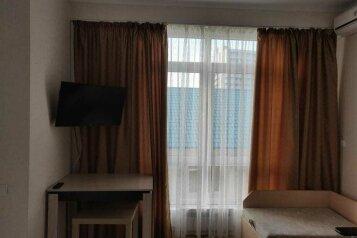 1-комн. квартира, 30 кв.м. на 3 человека, улица Просвещения, 167, Адлер - Фотография 3