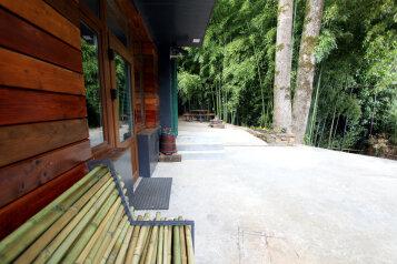 Бамбуковая роща - гостевой дом в центре Мацесты, улица Чекменёва, 11 на 2 номера - Фотография 3