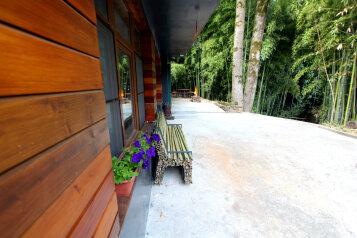 Бамбуковая роща - гостевой дом в центре Мацесты, улица Чекменёва, 11 на 2 номера - Фотография 4