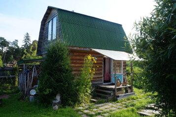 Дом с русской баней на дровах, 60 кв.м. на 8 человек, 2 спальни, Ивановская улица, 4, Большая Ижора - Фотография 1