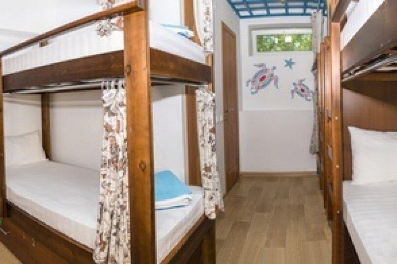 Одно место в 8-ми местном номере Черепаха для девочек, улица Ефремова, 24, Севастополь - Фотография 1