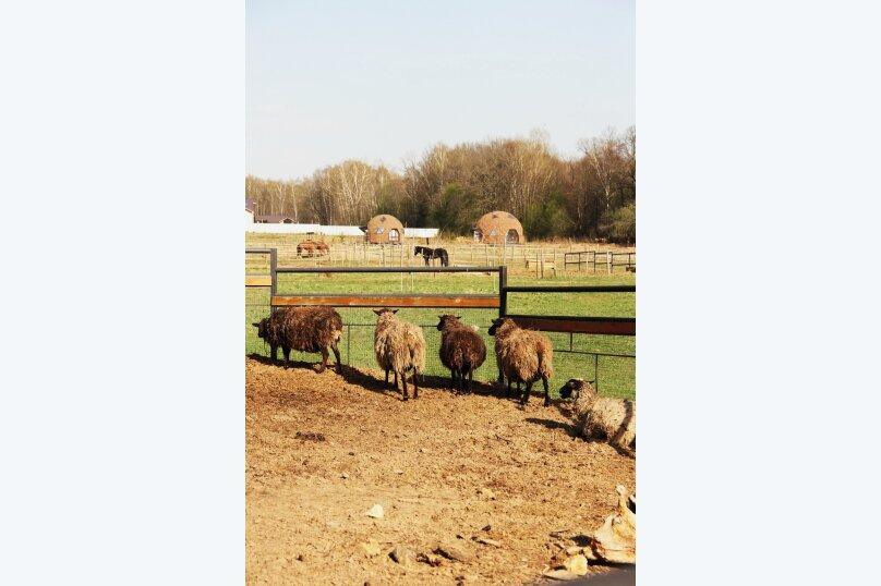 """Центр конного отдыха """"Караван"""", пос. Инино, Солнечная на 18 номеров - Фотография 9"""