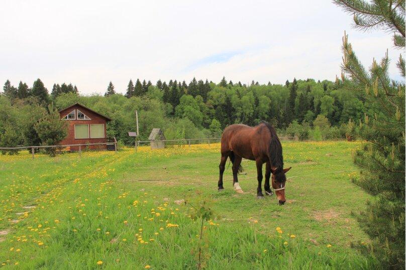 """Центр конного отдыха """"Караван"""", пос. Инино, Солнечная на 18 номеров - Фотография 17"""