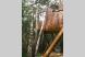 Домик на дереве:  Номер, 2-местный, 1-комнатный - Фотография 3