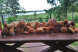 """Коттедж """"Берег у леса"""", 140 кв.м. на 6 человек, 2 спальни, СОНТ Гранит, 99А, Сортавала - Фотография 19"""