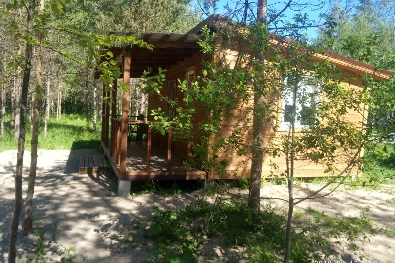 Два дома, с/п Плодовское, вблизи пос. Кутузовское на 2 номера - Фотография 34