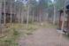 Два дома, с/п Плодовское, вблизи пос. Кутузовское на 2 номера - Фотография 25