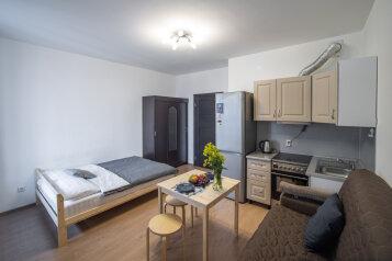 1-комн. квартира, 24 кв.м. на 4 человека, Столичная улица, 6, Кудрово - Фотография 1